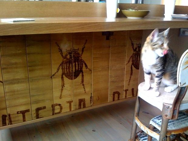Christina's bugs